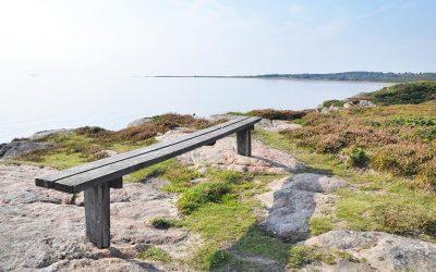 Sommarkurs i Falkenberg 2020, fördjupning, 13-17 juli